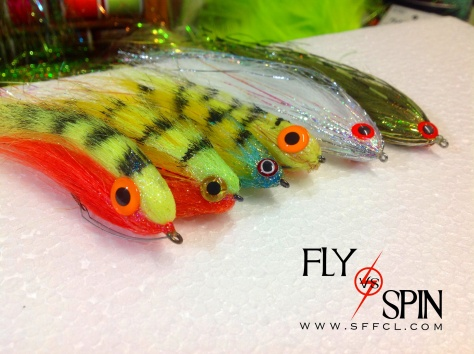 Fly vs Spin project